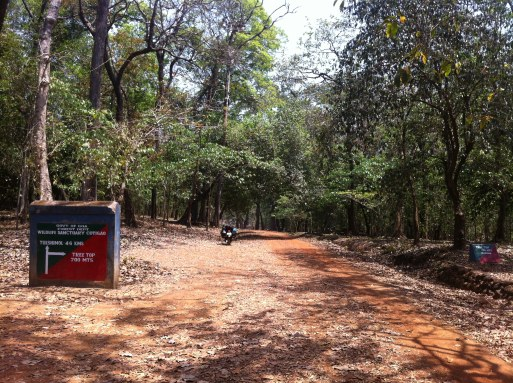 Cotigao National Park Goa